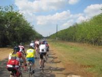 Cuba 2014 (16).jpg
